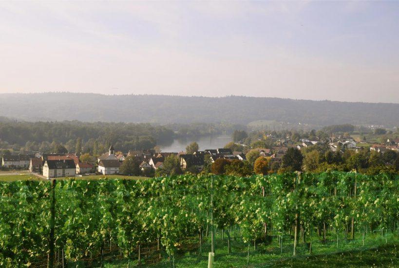 Blick über Büssingen